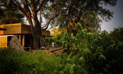 Vumbura, Wilderness Safari Camp, Okavango Delta, Botswana