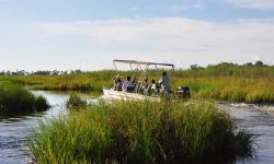 Africa; Botswana; Sanctuary Baines' Camp; Boating