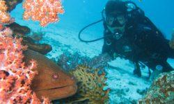 Diving-Matemwe-scuba-diving