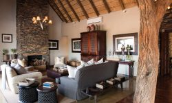 Little Madikwe Hills Lounge