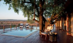 Madikwe Hills Pool and Deck