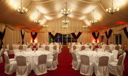 Marquee - 905396