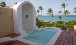 Matemwe-Retreat-private-plunge-pool-seaview