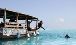 Matemwe-guests-diving-zanzibar