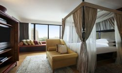 Royal Suite - 905538