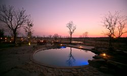 Wildtrack - Pool & Boma