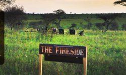 fireside 1