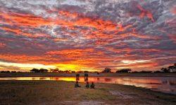 sunset_in_hwange_national_park