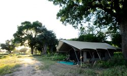 zambezi_expeditions_31