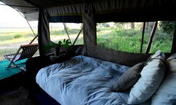 zambezi_expeditions_51