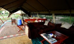 zambezi_expeditions_81