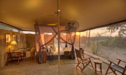 Room at Roho ya Selous