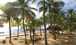 Sandies Tropical Village 1