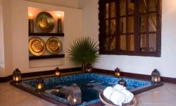PRIVATE_PLUNGE_POOL_THE_PALMS