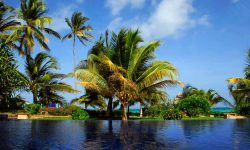 SWIMMING_POOL_THE_PALMS
