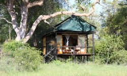 Bomani Tented Lodge - Zimbabwe