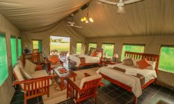 Tents of Bomani Tented Lodge