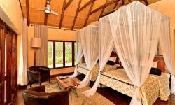 Gorges Lodge rooms