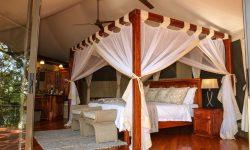 Room in Zambezi Sands River Lodge