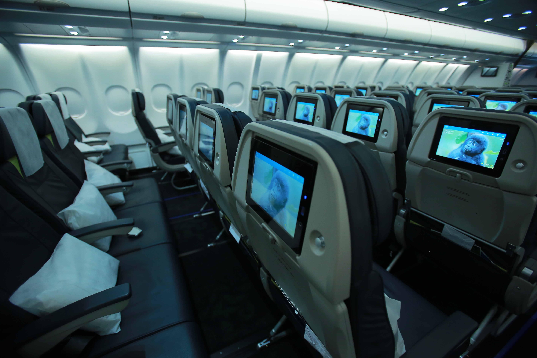 Economy Class Seat