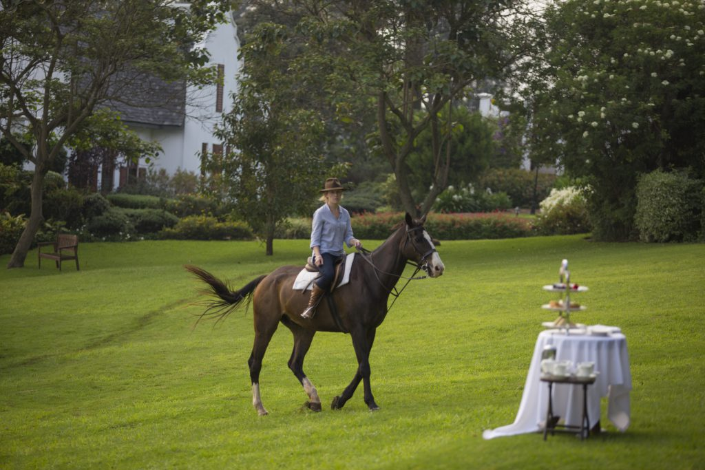 TheManor - Horse Riding and High Tea